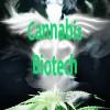 Biotech Stocks to Watch in 2015: Oxis International (OTCMKTS:OXIS), Medical Marijuana, Inc. (OTCMKTS:MJNA), Cannabis Science, Inc. (OTCMKTS:CBIS)