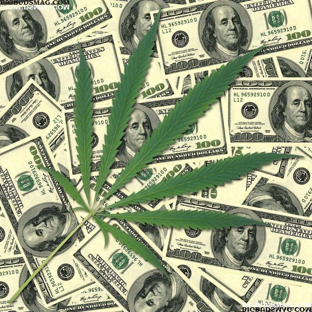 dispensary-cannabis