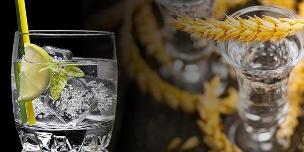 Vodka Industry